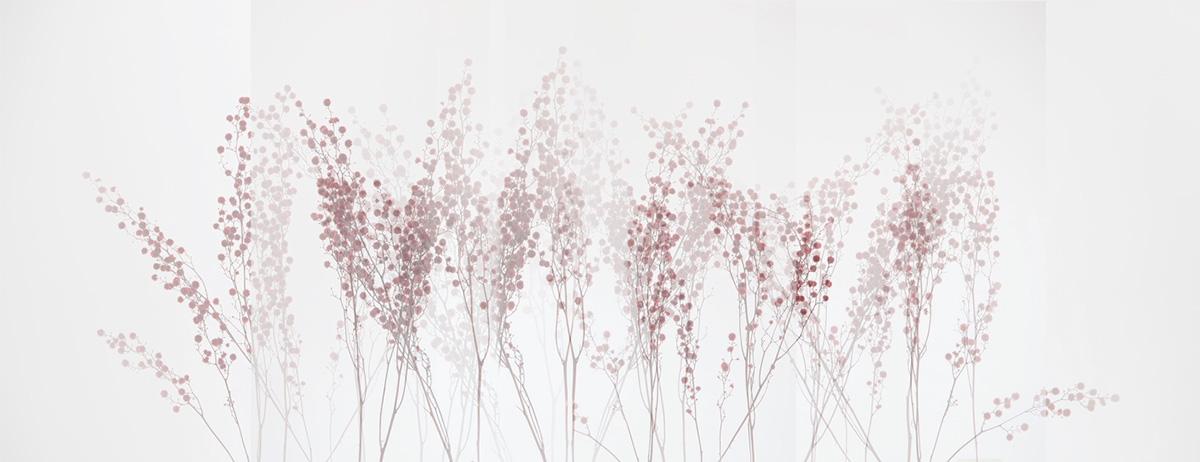Red-Grass-1